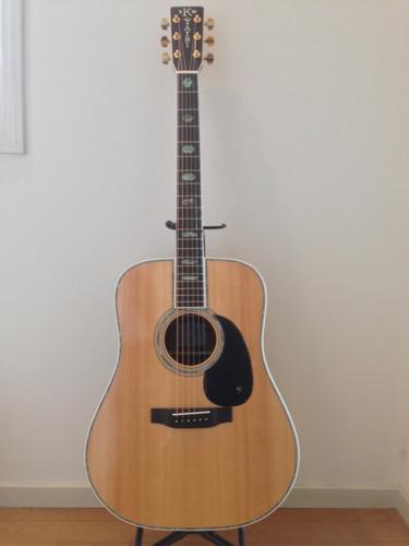 ギター・スタンドに立てかけたYW-1000