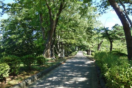 隅櫓への道