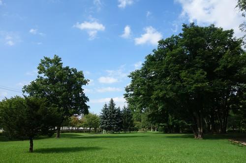 公園内風景3