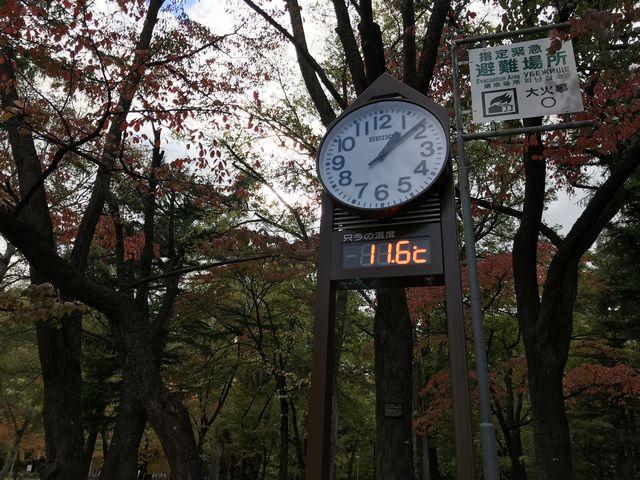 円山公園の温度計