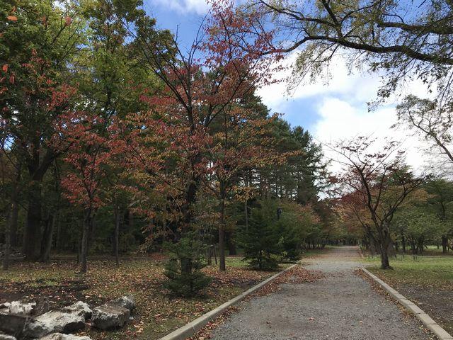 円山公園の神社へつづく道