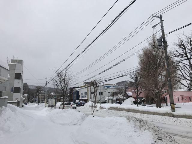 札幌市内の雪景色2