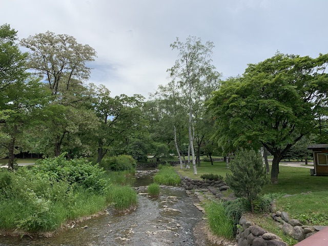 中島公園内の穏やかな景色