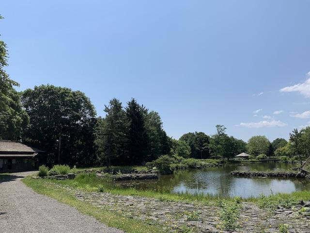 漁村付近の池